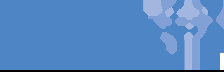 CARTUS_Logo_BLUE